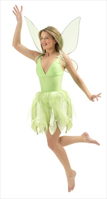 Disney Adult Tinkerbell Costume