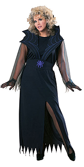 Full Figure Widows Web Costume
