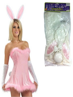 Honey Bunny Accessory kit