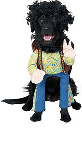 Pet Costume Groovy Dog
