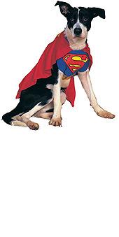 Pet Costume Superman