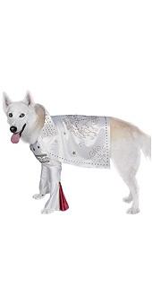 Rock Superstar Dog Pet Costume
