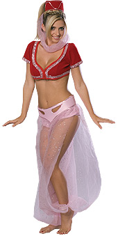 Secret Wishes I Dream of Jeannie Costume