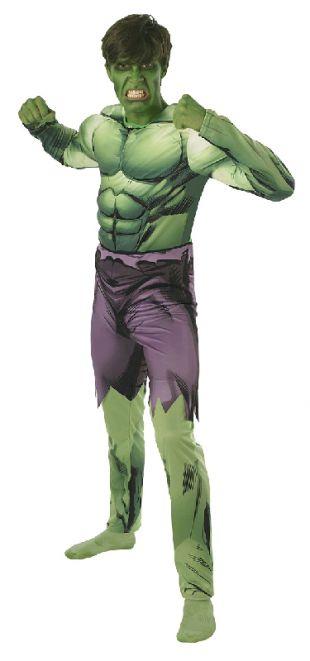 The Avengers Incredible Hulk Adult Costume