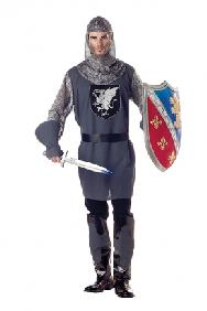 Valiant Knight Costume