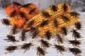 Bag O Roaches