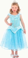Blue Princess Dress Child Costume