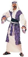 Desert Prince Adult Costume