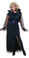 Full Figure Widows Web Costume