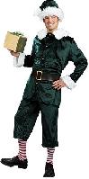 Jolly Green Helper Costume