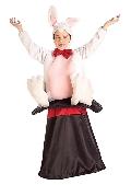 Magic Hat Bunny Costume