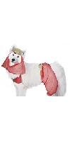 Pet costume Harem Dog