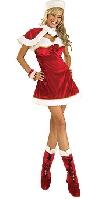 Santas Miss Inspiration Costume