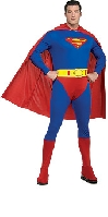 Superman Full Figure Costume
