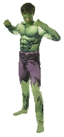 The Avengers Incredible Hulk Adult Costume