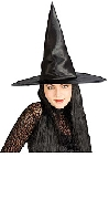 Witch Hat with Black Hair